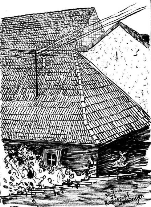 Page-7-haltiger-fire-roof
